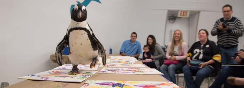 National Aviary Coolest Birthday Party Places in PA