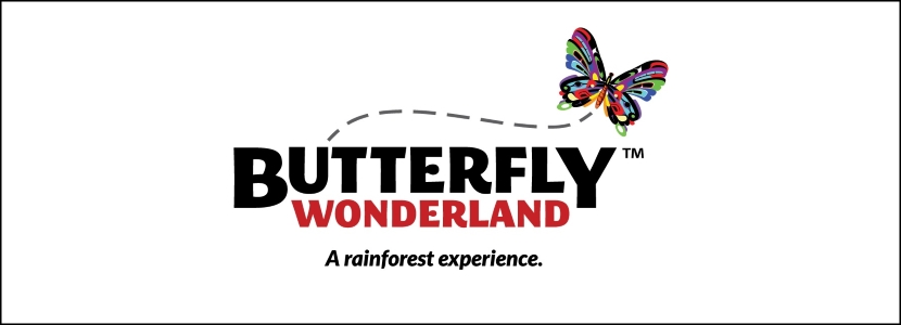 Butterfly Wonderland Unique Party Places Arizona