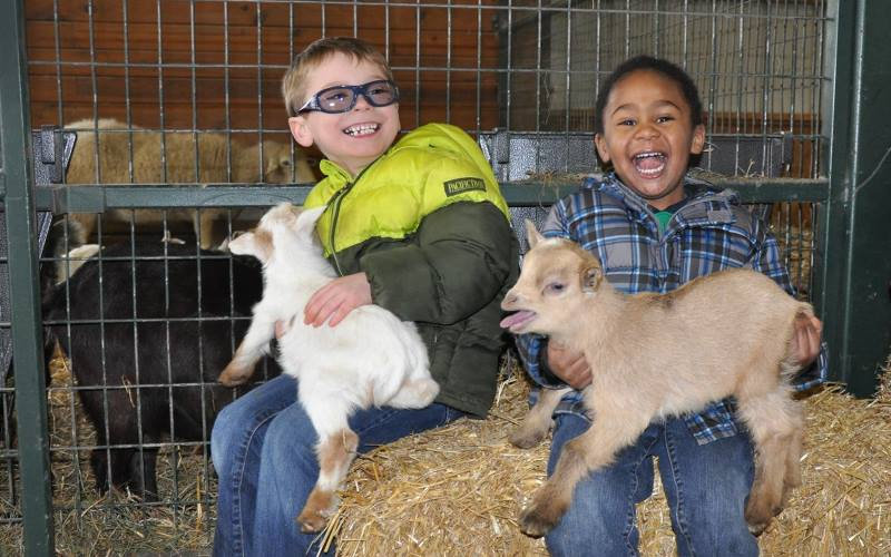 Barnyard Parties For Toddlers At Green Meadows Petting Farm In Md