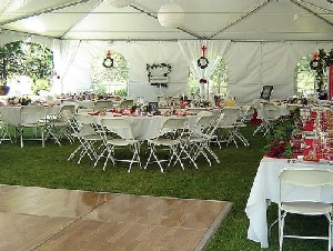 A Perfect Party Rentals In Pinal County Arizona