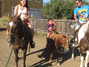 Armando's Pony Pals