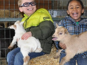 Green Meadows Petting Farm Birthday Parties For Toddlers In Maryland