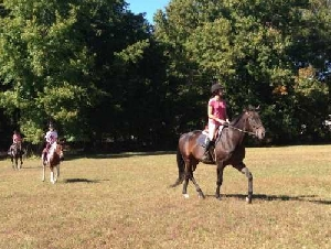 Hunter Brook Horse Farm animal themed birthday parties in Monmouth County NJ
