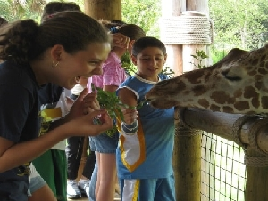 Jacksonville Zoo and Gardens Animal Themed Party