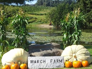 March Farm Animal Themed Birthday Parties For Children In CT