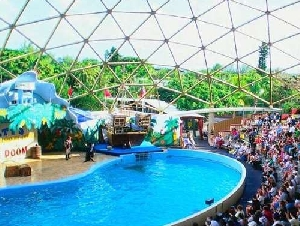 miami seaquarium party place in florida