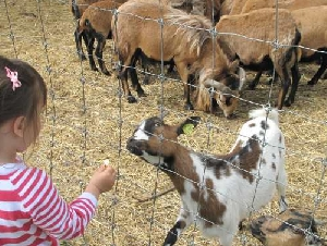 party animals petting zoo services in sudlersville md