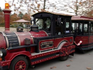 Trackless Train Rentals in Massachusetts