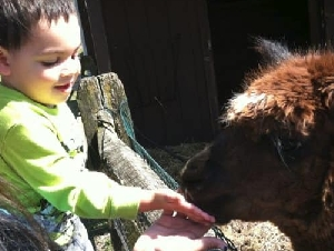 Paws Farm Nature Ceneter Kids Animal Themed Parties In Burlington County NJ