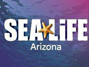 Sea Life Aquarium's Educational Play Parties for Kids in Tempe, AZ