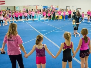 Valley Gymnastics Childrens Gymnastics Birthday Parties In Utica New York