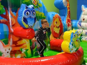 VinKari Safari Party Place For Toddlers In Middlesex County MA